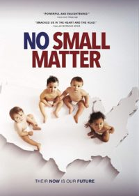 no small matter movie cover